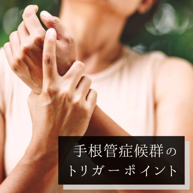 手根管症候群のツボ・トリガーポイントと原因となる筋肉