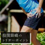 股関節痛のツボ(トリガーポイント)と痛みの原因となる筋肉