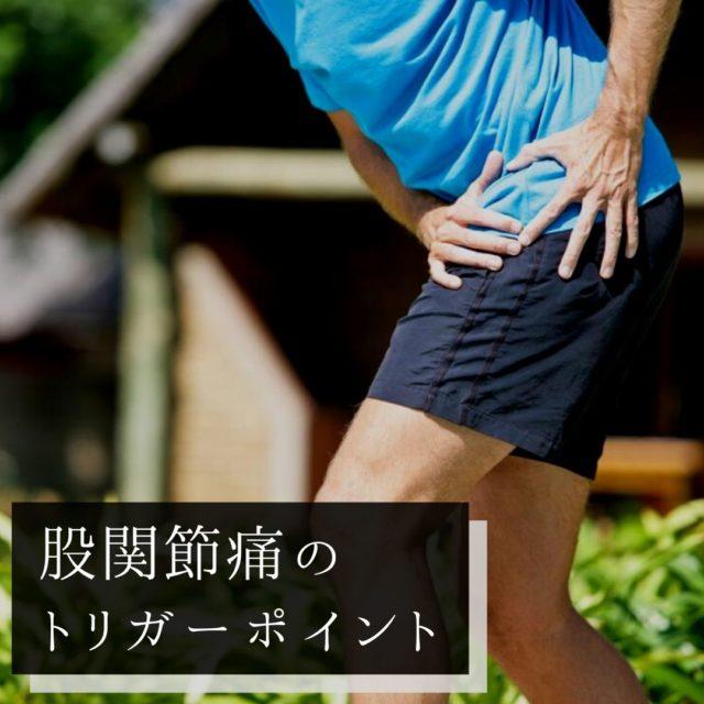 股関節痛のツボ・トリガーポイントと痛みの原因となる筋肉