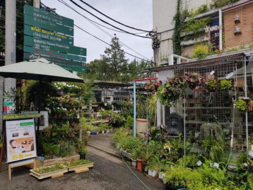 MiYaBi Natural Therapy 自由が丘店