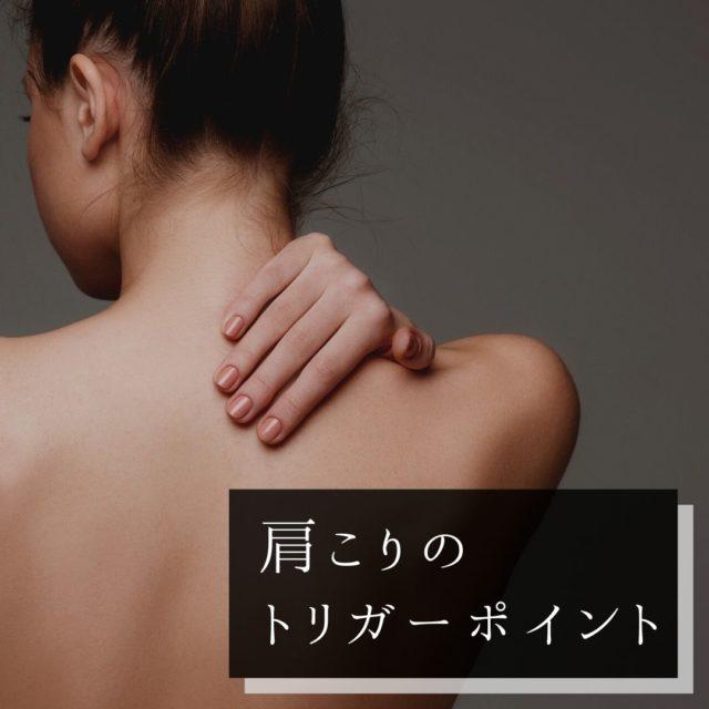 肩こりのツボ・トリガーポイントと痛みの原因となる筋肉